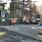 VN24_20171219_Vergato_Taglio alberi_006