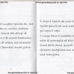 VN24_20170731_Silvano Monti_Ghiozzo Quaglione_005
