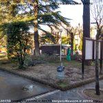 VN24_20171229Vergato_Taglio alberi_015