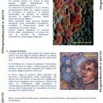 VN24_Sculca news_3 – 0003 copy