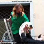 VN24_20210519_Mariella_Gatto_001