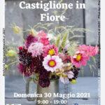 VN24_Castiglione in fiore 2021_01