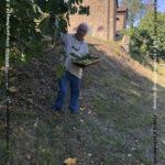 VN24_20210903_Grizzana_Fichi_Calisti_003