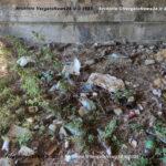 VN24_20210913_Vergato_Ponte e Corriere_Rifiuti_005